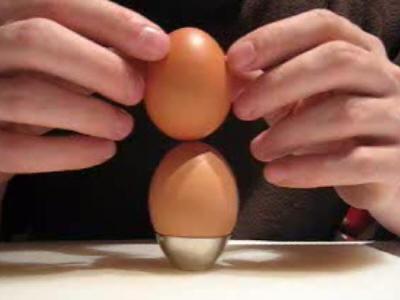 egg_city_4.jpg