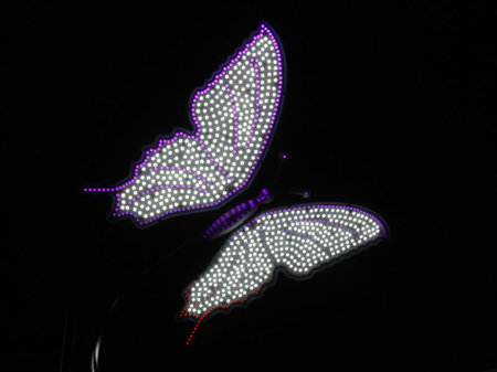 led dragonfly 4 thumb 450x337