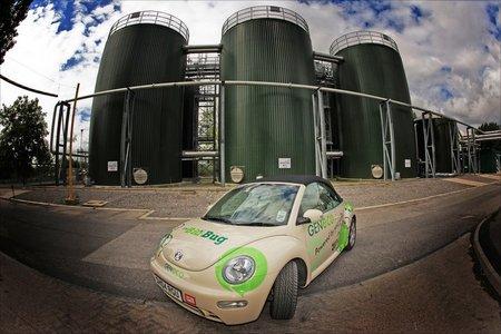 Bio-Bug_Volkswagen_Beetle3.jpg