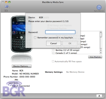 blackberrymediasync11.jpg